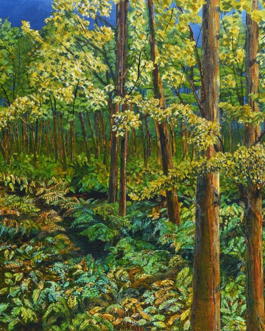 eucalyptus and ferns